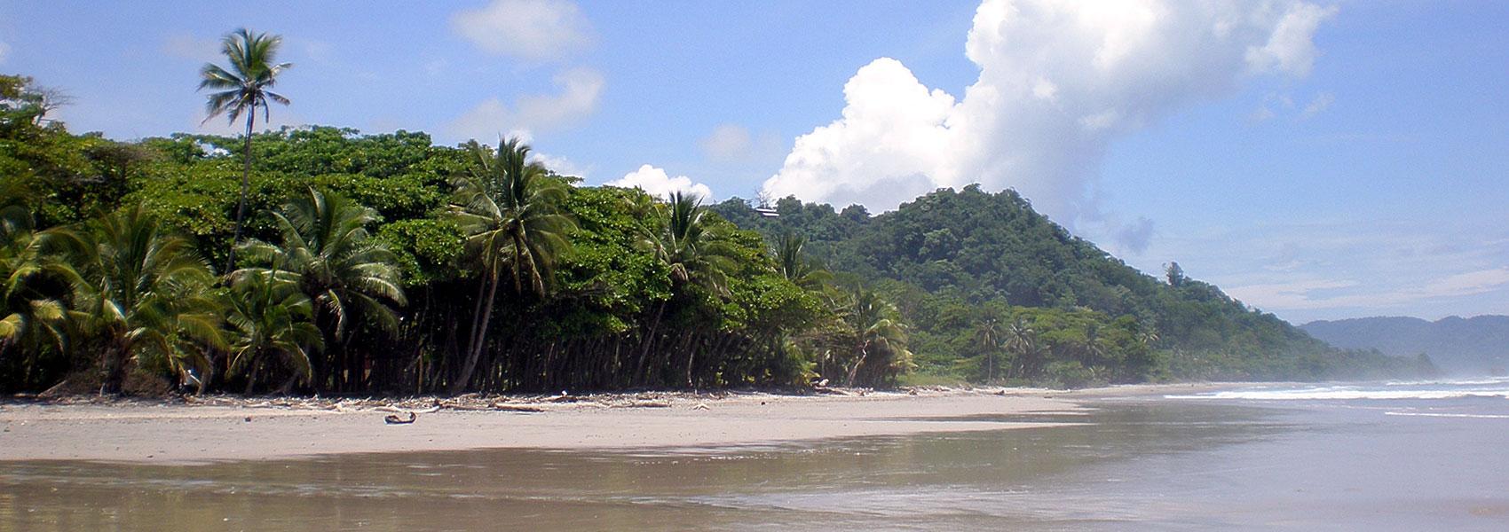 The gorgeous beaches of Santa Teresa are famous for their epic waves.
